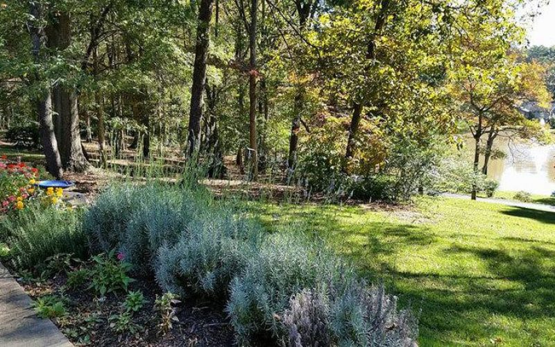 Carmel Hills in Charlotte, NC 2